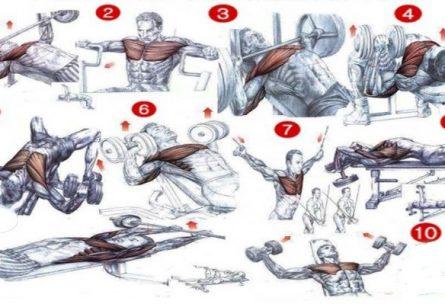 Най-добрите 10 упражнения за изграждане на мускулна маса за гърди
