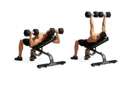 Преси с дъмбели от наклон за горни гърди / Incline Dumbell Press