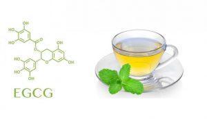 Екстракт от зелен чай - 10 ползи 2 | Timefortrain