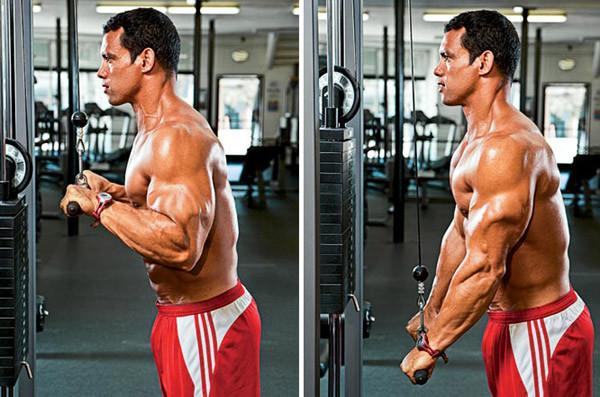 triceps-ekstenzii-s-vazhe-01-timefortrain
