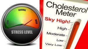 Как стресът допринася за холестерола 1 | Timefortrain